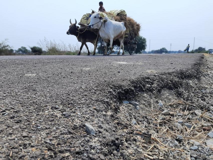 Ground Report: बायपास पर चल रही सिर्फ बैलगाड़ी, फिर भी उखड़ रही परत, इधर पुलिया की दरार छिपा रहा ठेकेदार